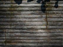Fundo de bambu imagens de stock royalty free