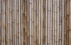 Fundo de bambu cinzento da cerca Imagens de Stock