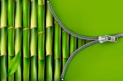 Fundo de bambu com zipper aberto Imagens de Stock Royalty Free