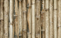 Fundo de bambu da cerca Fotografia de Stock Royalty Free