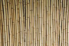 Fundo de bambu da cerca Imagens de Stock