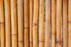 Fundo de bambu da cerca, texturas de bambu da parede, natureza abstrata fotografia de stock royalty free