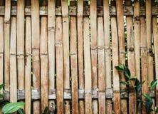 Fundo de bambu da textura da prancha da parede Foto de Stock Royalty Free