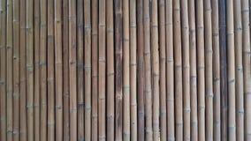 Fundo de bambu da textura do teste padrão do arranjo Imagem de Stock