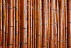 Fundo de bambu natural Fotos de Stock