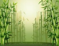 Fundo de bambu verde das árvores dentro da floresta Fotos de Stock Royalty Free