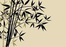 Fundo de bambu, vetor Foto de Stock Royalty Free