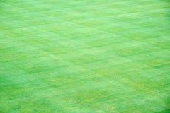 Fundo de blocos quadrados bonitos de grama verde foto de stock royalty free