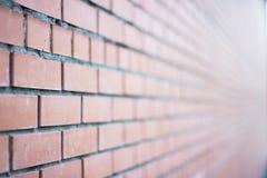 Fundo de Brown da parede de tijolo Fotografia de Stock