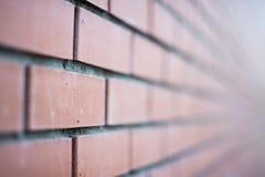 Fundo de Brown da parede de tijolo Fotografia de Stock Royalty Free