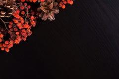 Fundo de canto do Natal na madeira de pinho preto Fotografia de Stock Royalty Free