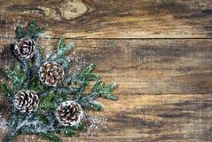 Fundo de Chirstmas com cones do pinho e ramo de árvore do abeto Imagens de Stock Royalty Free