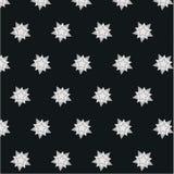 Fundo de contraste brilhante do teste padrão do floco de neve da estrela Fotos de Stock