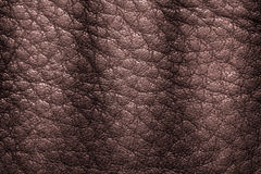 Fundo de couro da textura para a forma, a mobília ou o interior Imagens de Stock Royalty Free