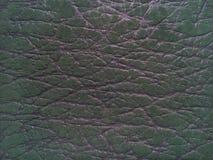 Fundo de couro genuíno verde da textura fotos de stock royalty free