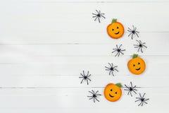 Fundo de Dia das Bruxas com abóboras e as aranhas decorativas no whi Imagem de Stock