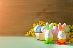 Fundo de Easter Os coelhinhos da Páscoa e os ovos da páscoa na caixa perto da mimosa florescem Fotos de Stock