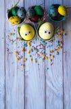 Fundo de Easter Os ovos da páscoa engraçados pintaram amarelo no fundo da cor Conceito do feriado da Páscoa foto de stock royalty free