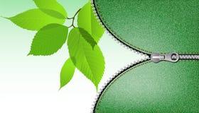Fundo de Eco Imagens de Stock