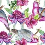 Fundo de elementos tropicais dos pássaros e das flores Teste padrão sem emenda ilustração royalty free