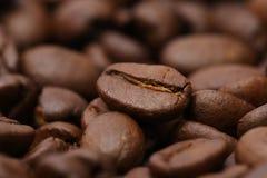 Fundo de feijões de café Imagens de Stock Royalty Free