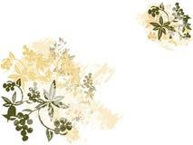 Fundo de Grunge da flor ilustração do vetor