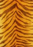 Fundo de Grunge - pele de um tigre Fotografia de Stock Royalty Free