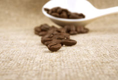Fundo de linho dos feijões de café Imagens de Stock Royalty Free