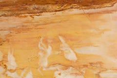 Fundo de mármore da textura Imagens de Stock