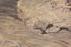Fundo de mármore da textura Foto de Stock