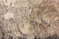 Fundo de mármore da textura Fotos de Stock