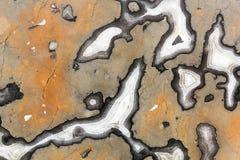 Fundo de mármore da textura Fotografia de Stock