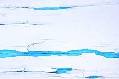Fundo de madeira áspero pintado, parede velha com branco rachado da pintura no contexto azul imagem de stock