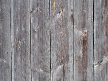 Fundo de madeira. Fotos de Stock Royalty Free