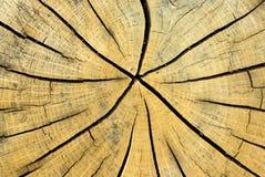 Fundo de madeira abstrato Fotografia de Stock Royalty Free