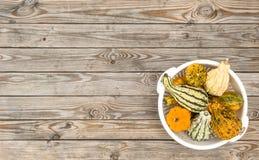 Fundo de madeira Autumn Thanksgiving da tabela da abóbora Fotos de Stock Royalty Free