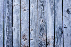 Fundo de madeira azul brilhante da textura das venezianas Fotografia de Stock Royalty Free