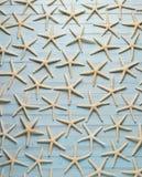 Fundo de madeira azul da estrela do mar fotos de stock royalty free
