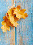 Fundo de madeira azul do outono Foto de Stock Royalty Free