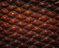 Fundo de madeira Checkered foto de stock royalty free