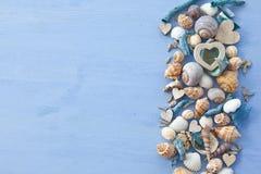 Fundo de madeira com escudos do mar imagem de stock royalty free