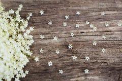 Fundo de madeira com flor branca, copyspace Fotos de Stock