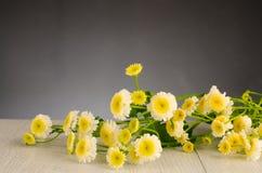 Fundo de madeira com flores da mola Fotos de Stock Royalty Free