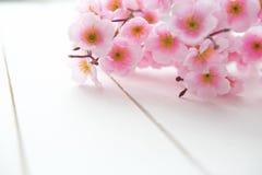 Fundo de madeira com flores da mola Fotografia de Stock Royalty Free