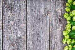 Fundo de madeira com lúpulo fresco Foto de Stock Royalty Free