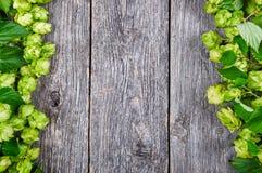 Fundo de madeira com lúpulo fresco Imagem de Stock Royalty Free