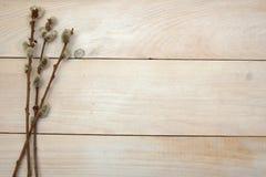 Fundo de madeira com ramos Imagens de Stock