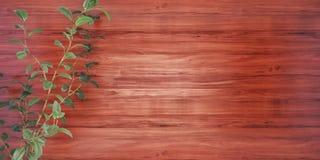 Fundo de madeira com uma ilustração da planta 3D ilustração stock