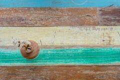Fundo de madeira da flor e da tabela do vintage Foto de Stock