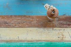 Fundo de madeira da flor e do vintage Foto de Stock